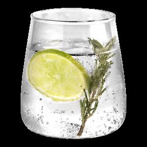 profumi e note alcoliche - gin